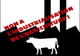 CF-stop_1000_vaches2