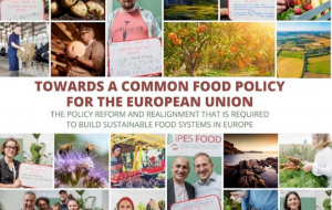 Towards-an-EU-Common-Food_Policy-(foto IPES_Food)