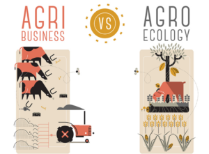 Conceptual illustration of agribusiness vs agroecology Pablo Peiker (CC0)- https://www.flickr.com/photos/peiker/31817631921