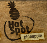 fairfood-hotspot_pineapple