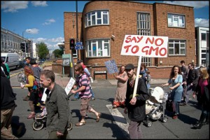 gmo-say_no_to_gmo(m_shields_photography)